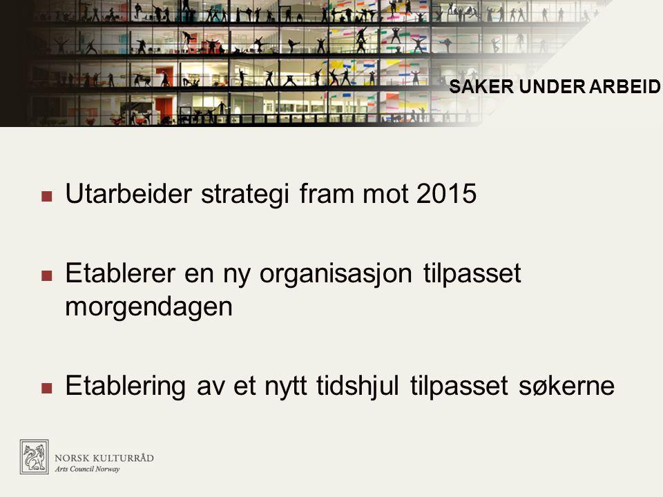 Utarbeider strategi fram mot 2015