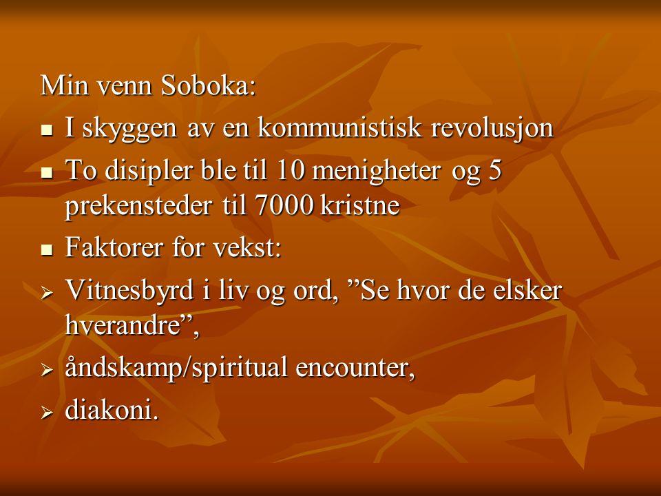 Min venn Soboka: I skyggen av en kommunistisk revolusjon. To disipler ble til 10 menigheter og 5 prekensteder til 7000 kristne.