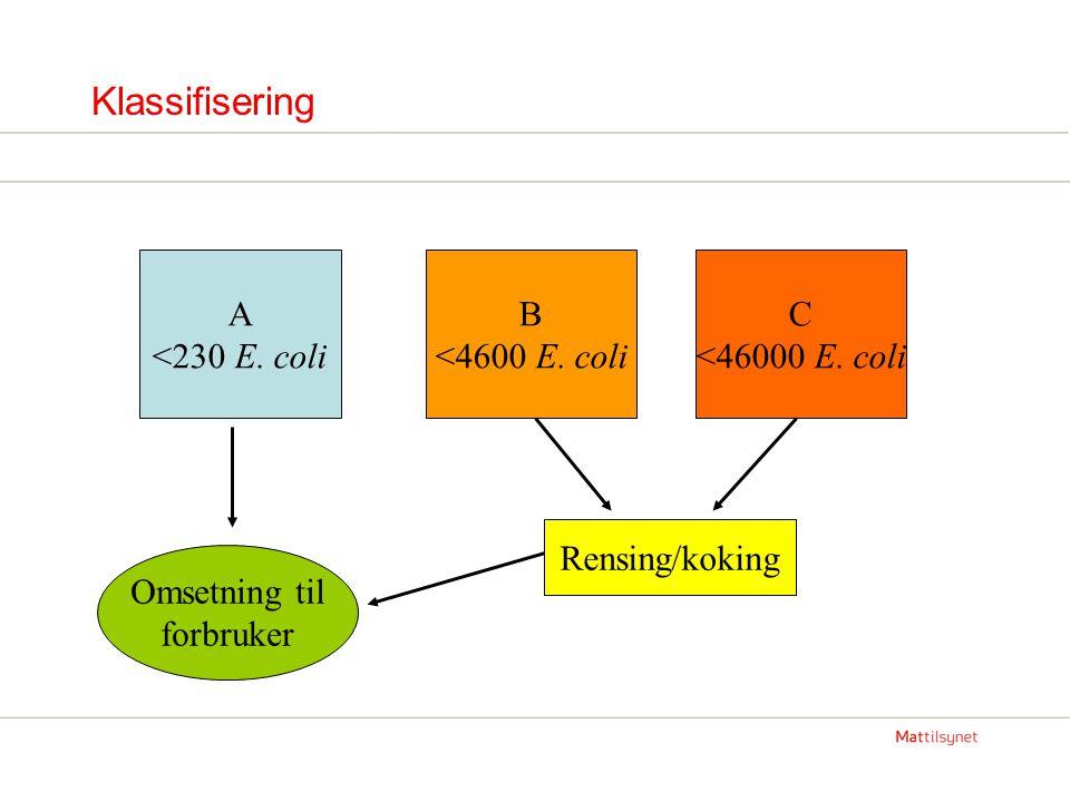 Klassifisering A <230 E. coli B <4600 E. coli C