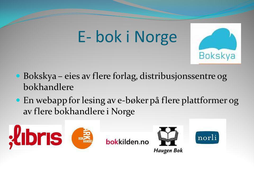 E- bok i Norge Bokskya – eies av flere forlag, distribusjonssentre og bokhandlere.