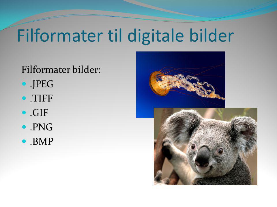 Filformater til digitale bilder