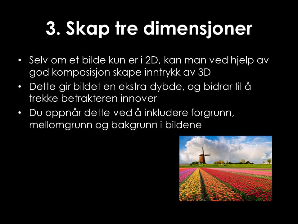 3. Skap tre dimensjoner Selv om et bilde kun er i 2D, kan man ved hjelp av god komposisjon skape inntrykk av 3D.
