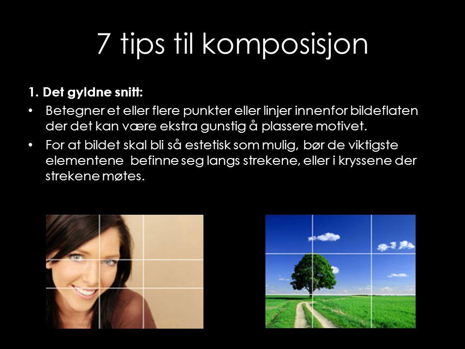 7 tips til komposisjon 1. Det gyldne snitt: