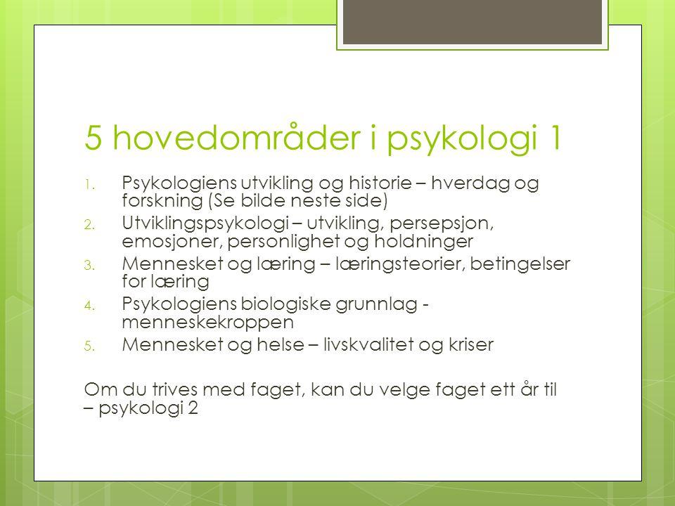 5 hovedområder i psykologi 1