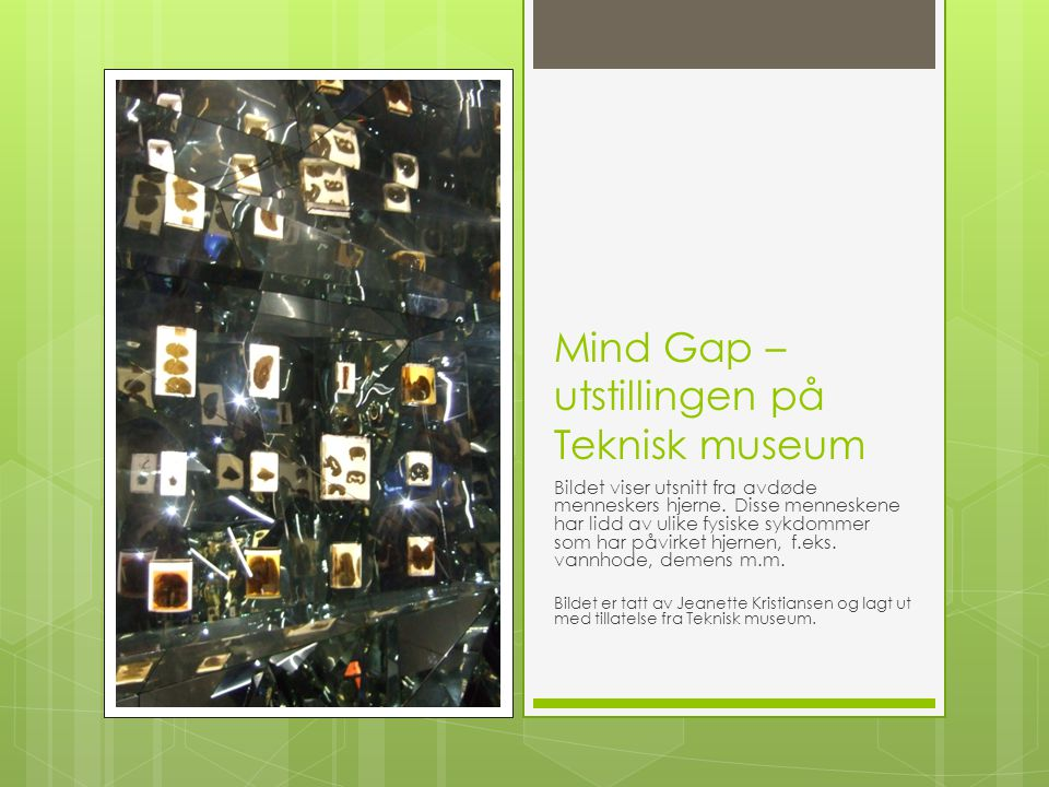 Mind Gap – utstillingen på Teknisk museum