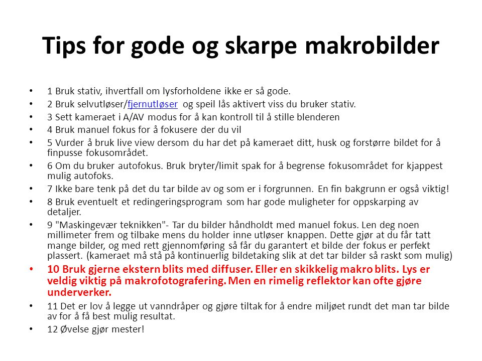 Tips for gode og skarpe makrobilder