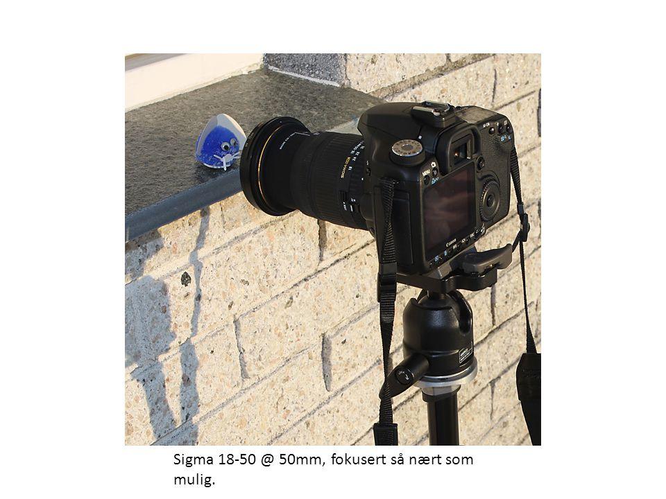Sigma 18-50 @ 50mm, fokusert så nært som mulig.