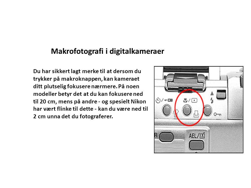 Makrofotografi i digitalkameraer