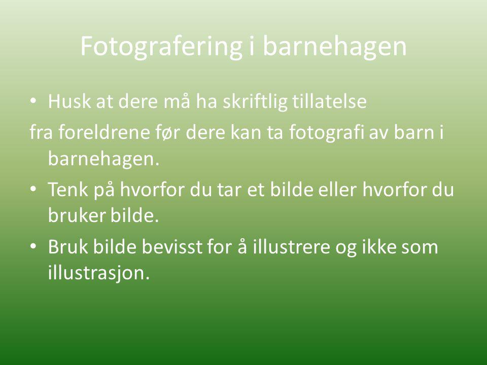Fotografering i barnehagen