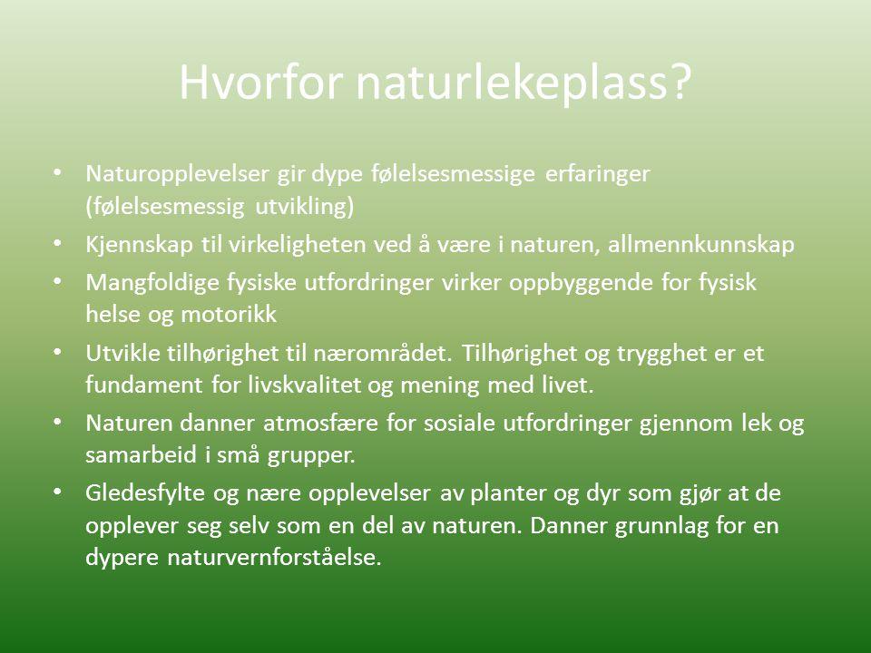 Hvorfor naturlekeplass
