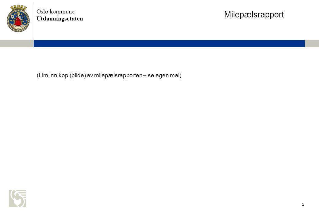 Milepælsrapport (Lim inn kopi(bilde) av milepælsrapporten – se egen mal)