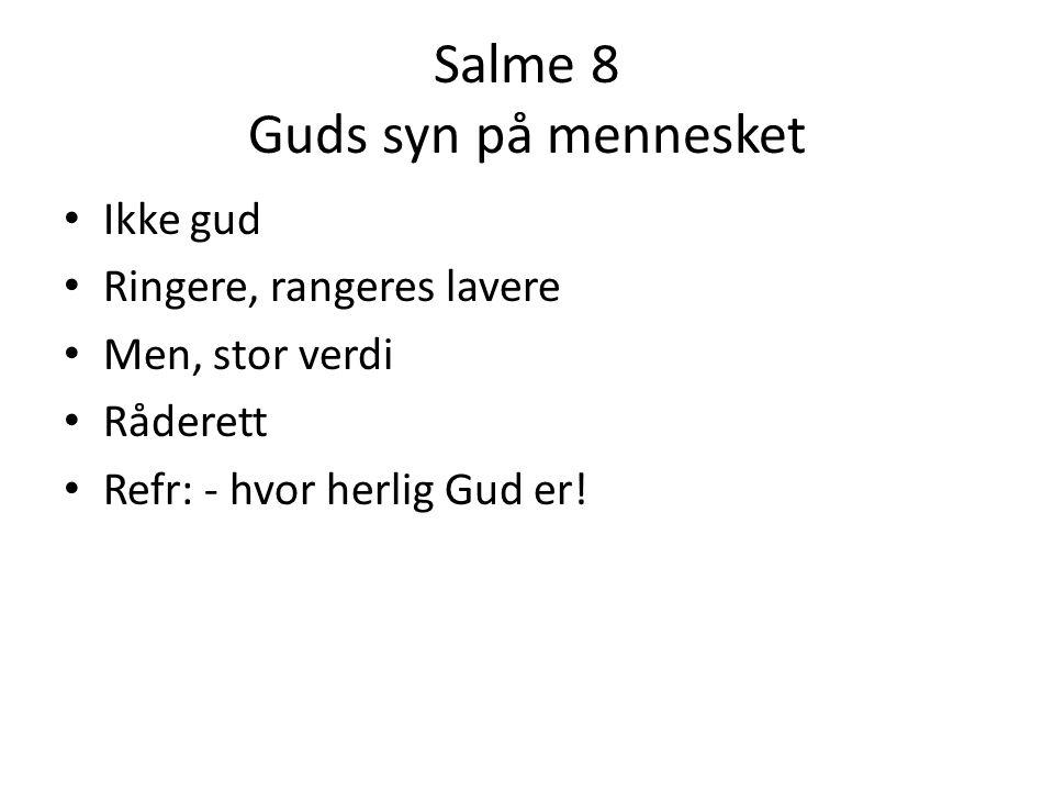 Salme 8 Guds syn på mennesket