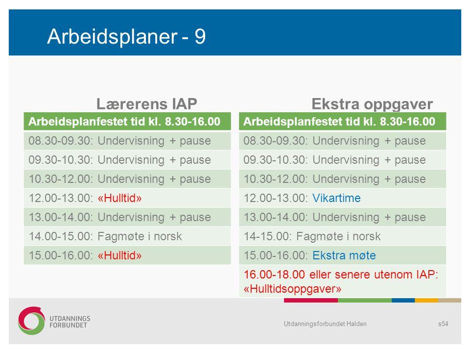 Arbeidsplaner - 9 Lærerens IAP Ekstra oppgaver