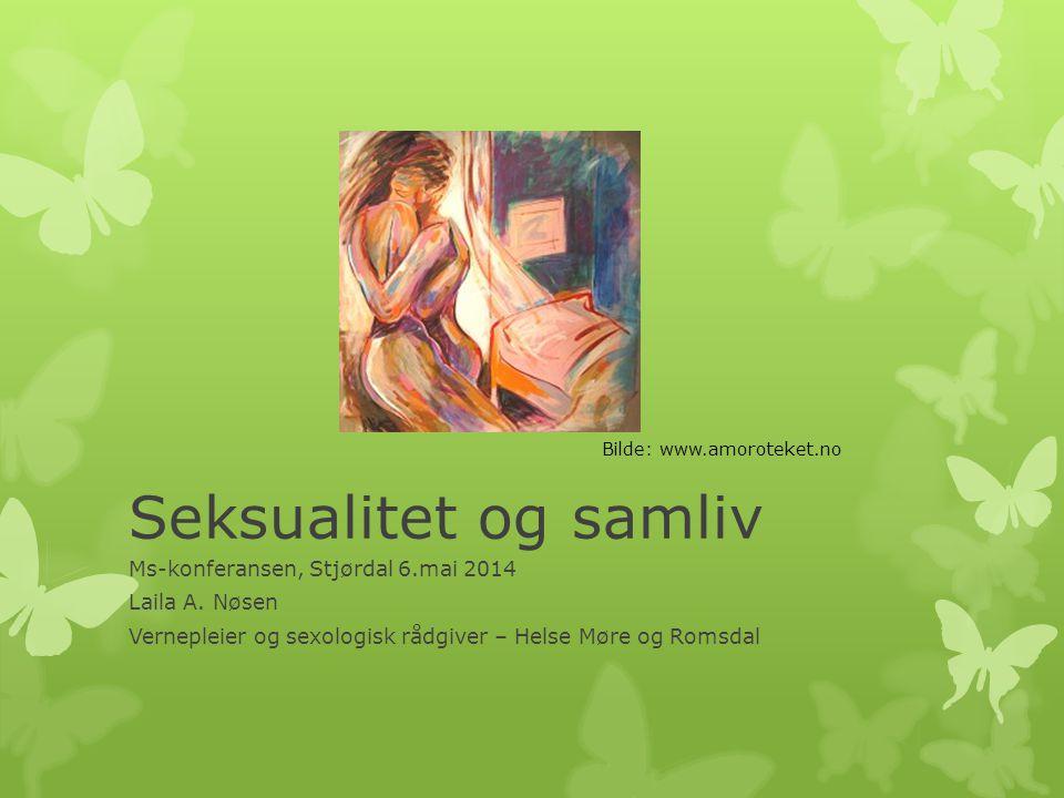Seksualitet og samliv Ms-konferansen, Stjørdal 6.mai 2014
