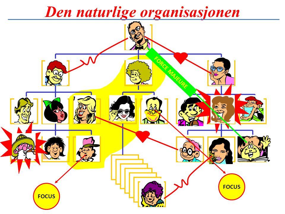 Den naturlige organisasjonen