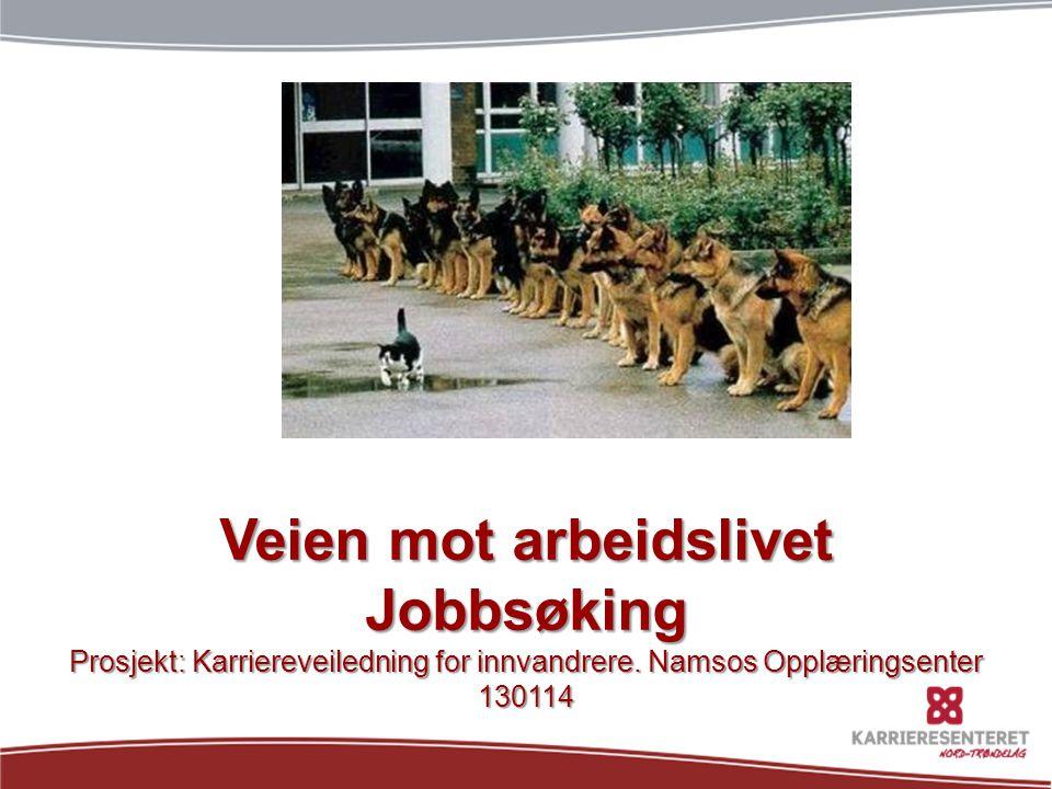 Veien mot arbeidslivet