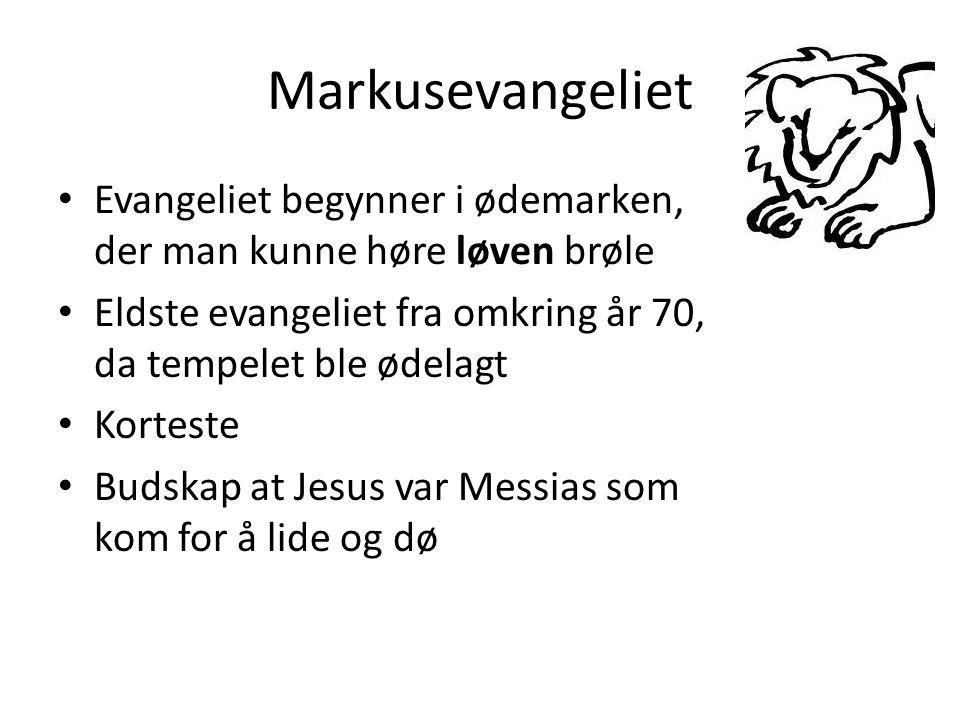 Markusevangeliet Evangeliet begynner i ødemarken, der man kunne høre løven brøle. Eldste evangeliet fra omkring år 70, da tempelet ble ødelagt.