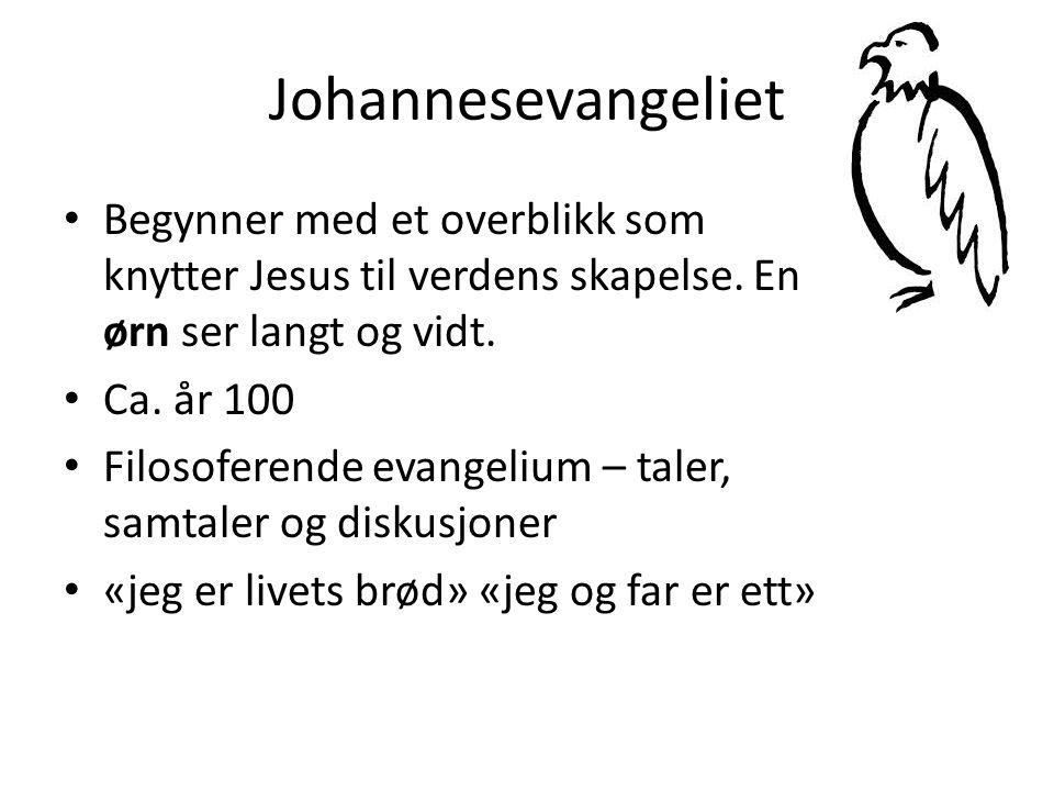 Johannesevangeliet Begynner med et overblikk som knytter Jesus til verdens skapelse. En ørn ser langt og vidt.