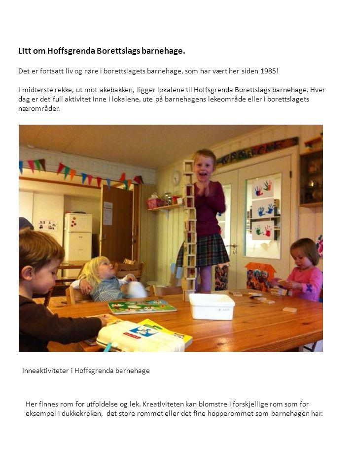 Litt om Hoffsgrenda Borettslags barnehage.