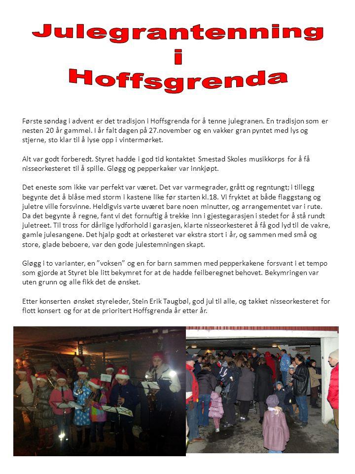 Julegrantenning i Hoffsgrenda