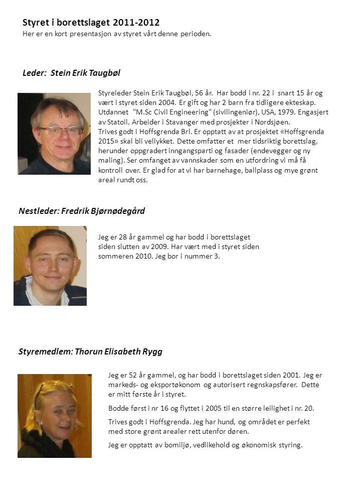 Styret i borettslaget 2011-2012