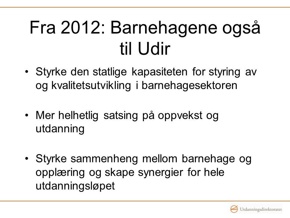 Fra 2012: Barnehagene også til Udir