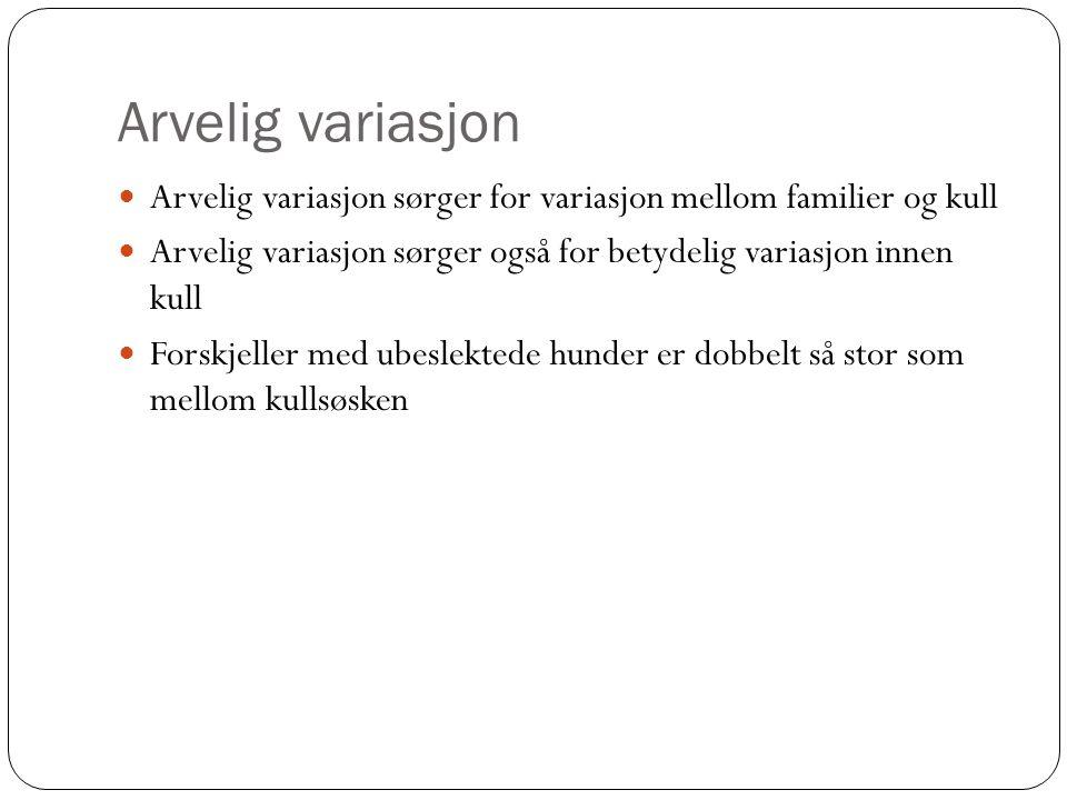 Arvelig variasjon Arvelig variasjon sørger for variasjon mellom familier og kull. Arvelig variasjon sørger også for betydelig variasjon innen kull.