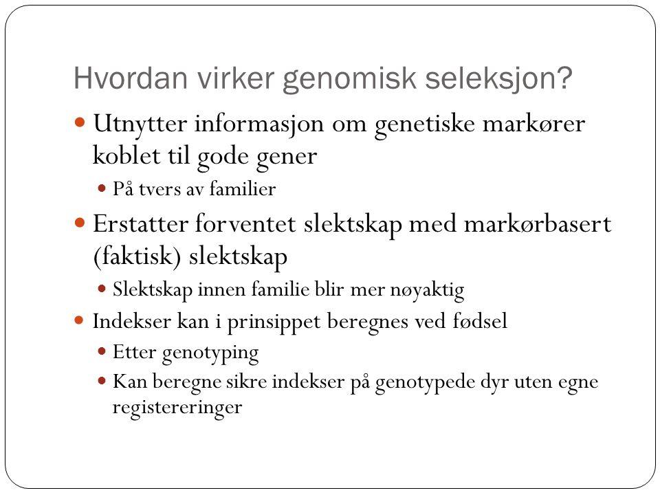 Hvordan virker genomisk seleksjon