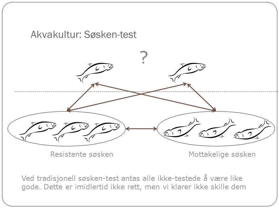 Akvakultur: Søsken-test