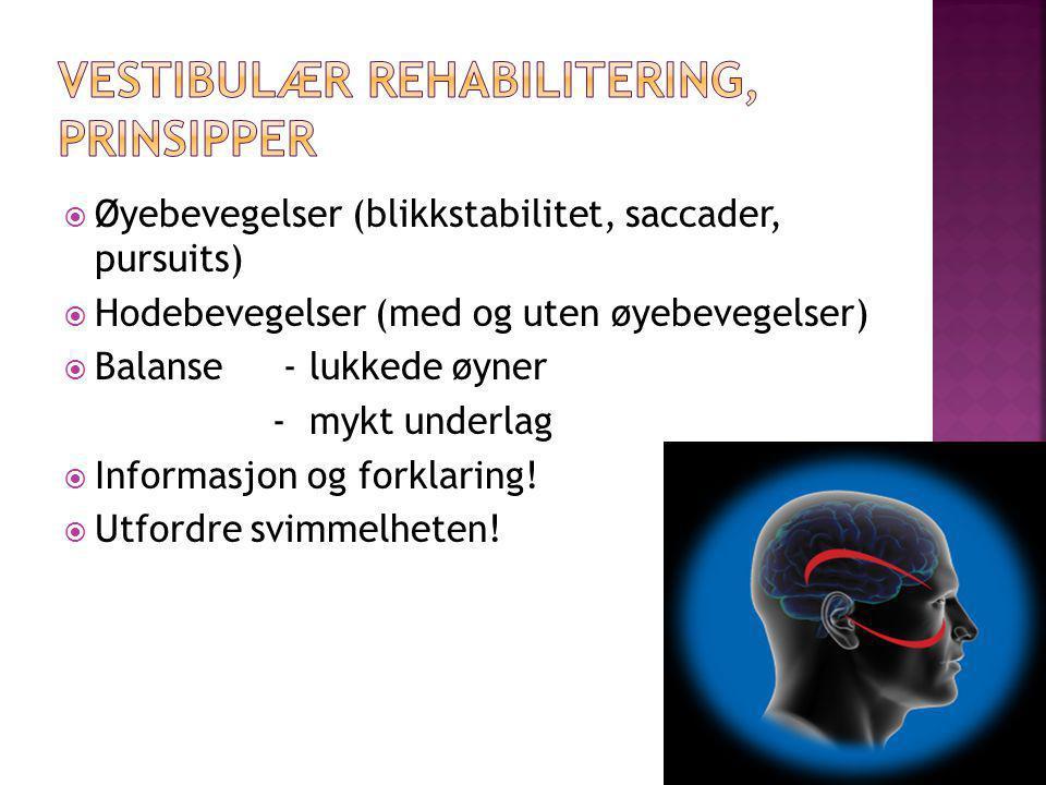 Vestibulær rehabilitering, prinsipper