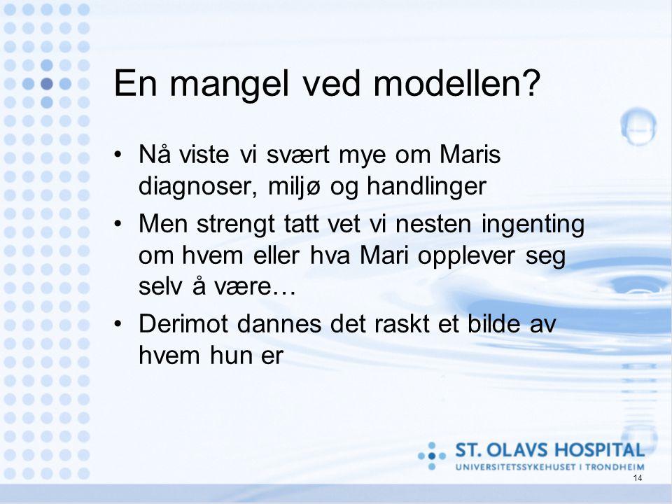 En mangel ved modellen Nå viste vi svært mye om Maris diagnoser, miljø og handlinger.