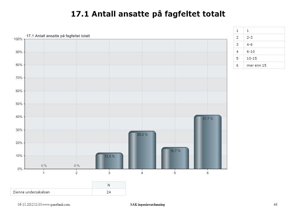 17.1 Antall ansatte på fagfeltet totalt