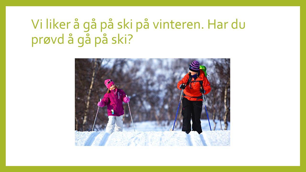 Vi liker å gå på ski på vinteren. Har du prøvd å gå på ski