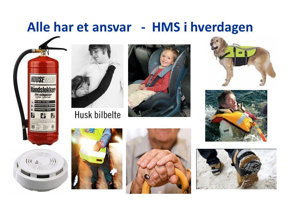Alle har et ansvar - HMS i hverdagen