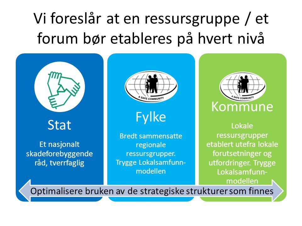 Vi foreslår at en ressursgruppe / et forum bør etableres på hvert nivå