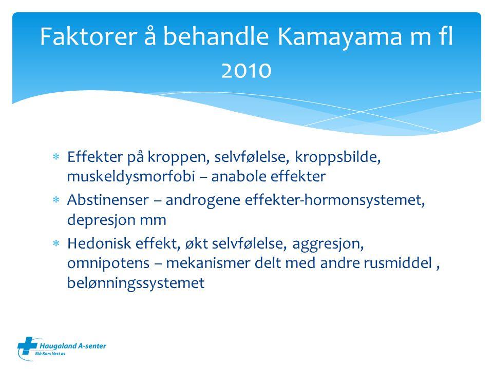 Faktorer å behandle Kamayama m fl 2010