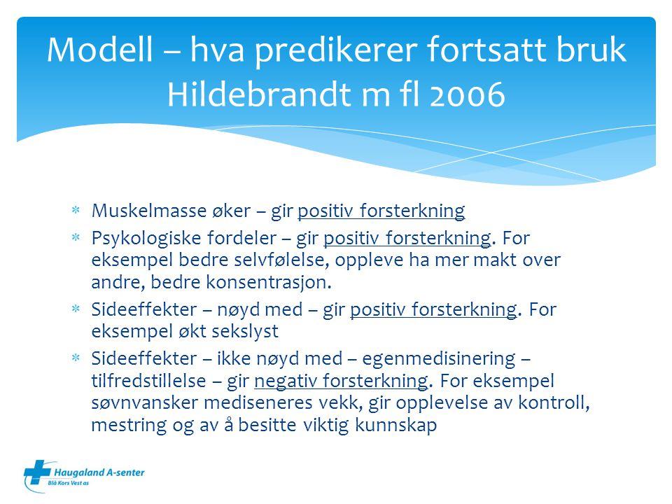Modell – hva predikerer fortsatt bruk Hildebrandt m fl 2006