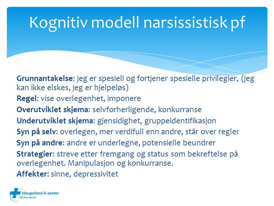 Kognitiv modell narsissistisk pf