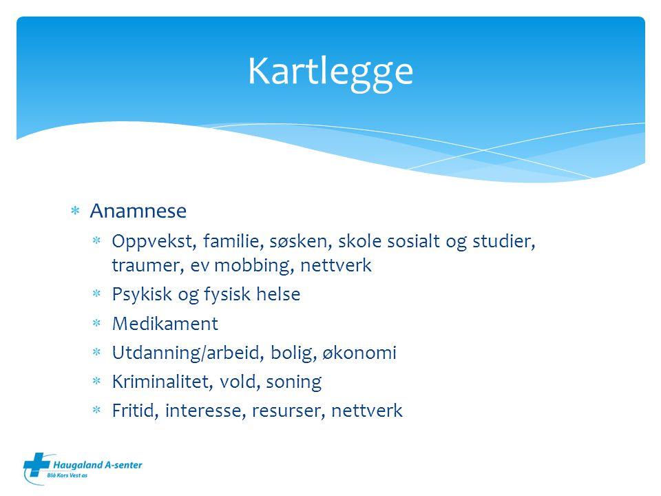 Kartlegge Anamnese. Oppvekst, familie, søsken, skole sosialt og studier, traumer, ev mobbing, nettverk.