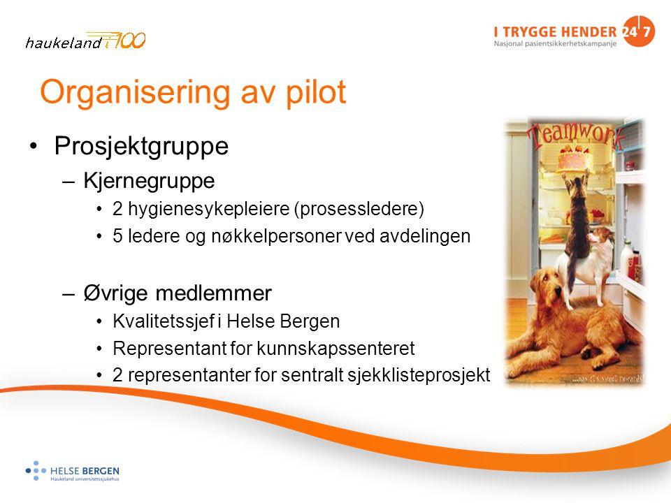 Organisering av pilot Prosjektgruppe Kjernegruppe Øvrige medlemmer
