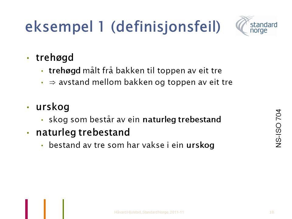eksempel 1 (definisjonsfeil)