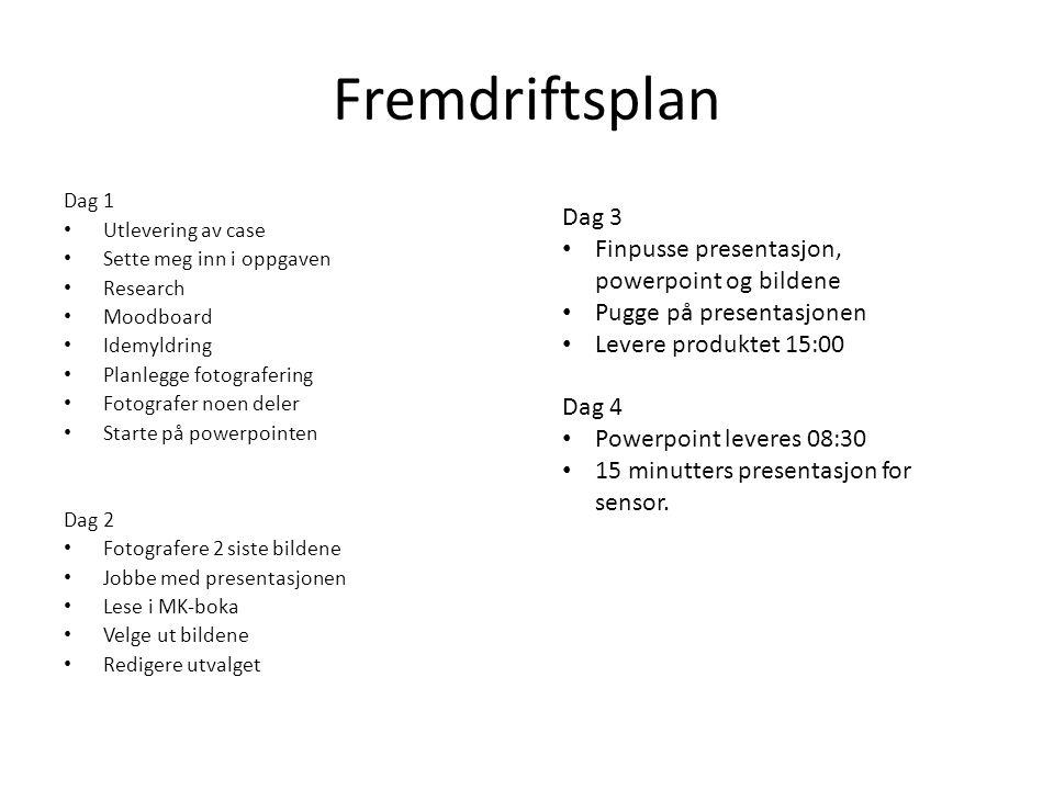 Fremdriftsplan Dag 3 Finpusse presentasjon, powerpoint og bildene