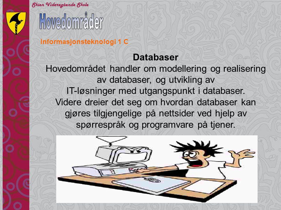 IT-løsninger med utgangspunkt i databaser.