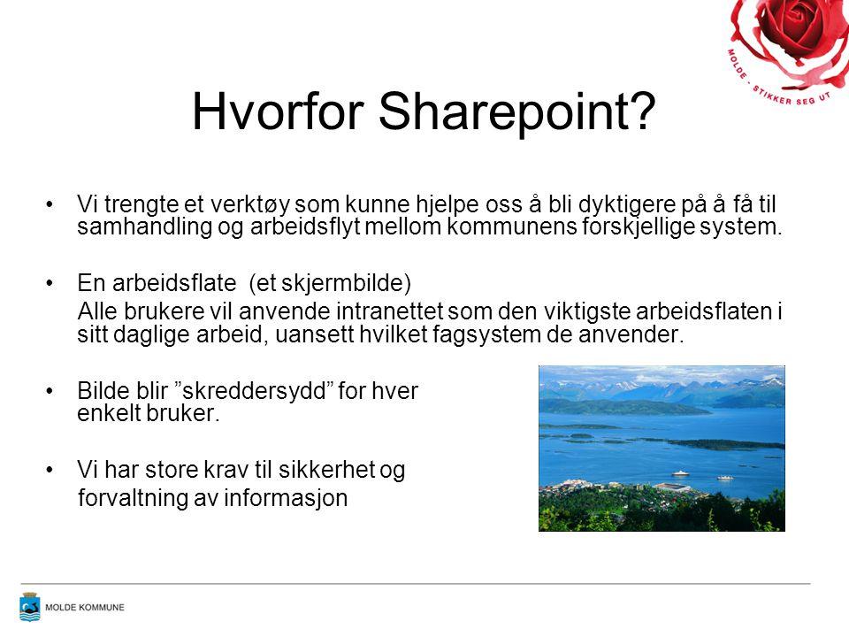 Hvorfor Sharepoint