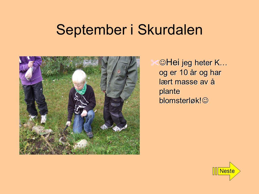 September i Skurdalen Hei jeg heter K… og er 10 år og har lært masse av å plante blomsterløk!