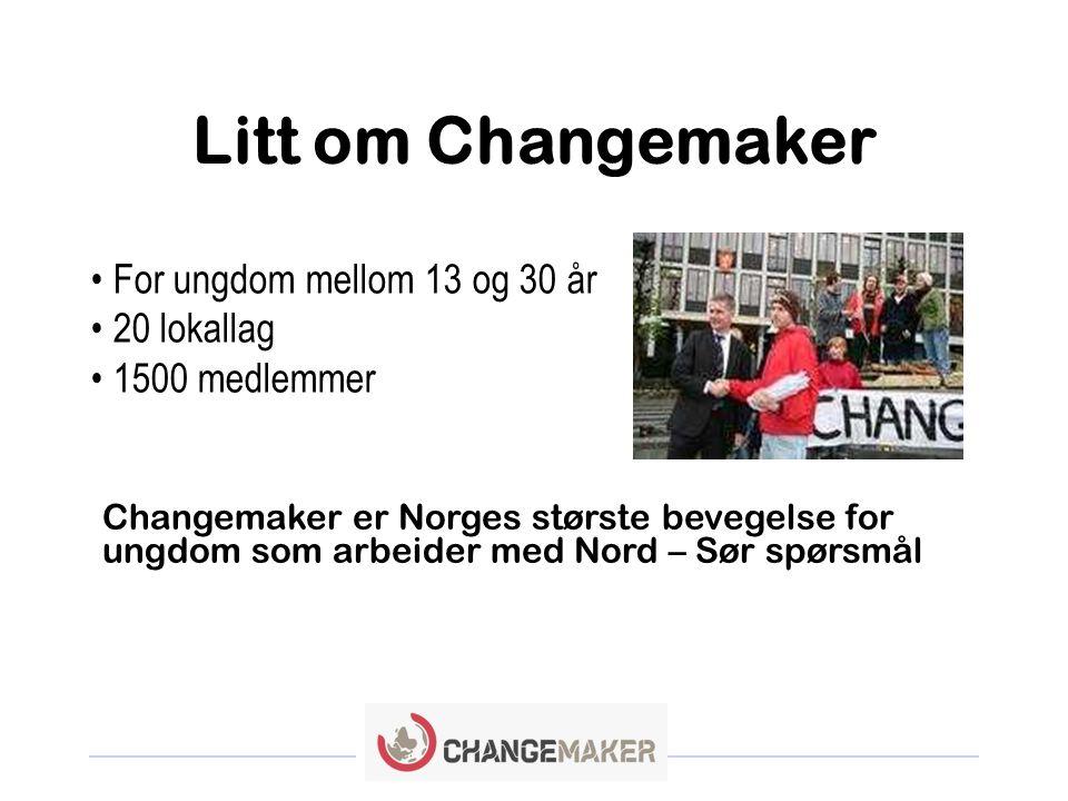 Litt om Changemaker For ungdom mellom 13 og 30 år 20 lokallag