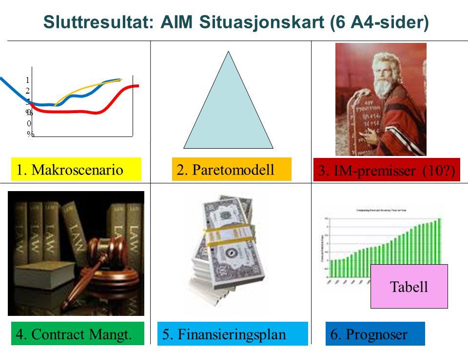 Sluttresultat: AIM Situasjonskart (6 A4-sider)