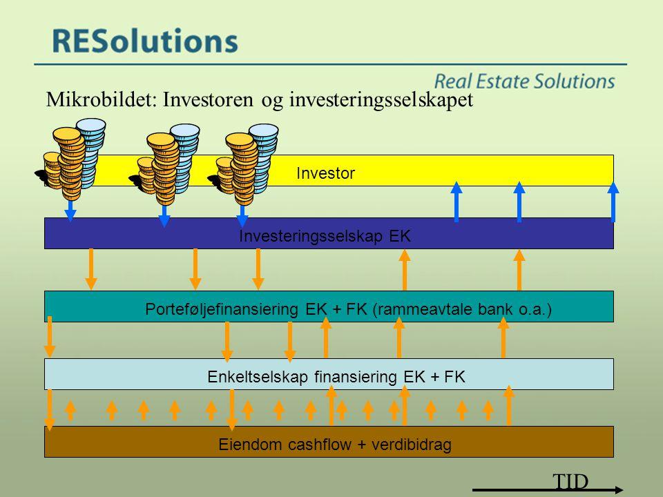 Mikrobildet: Investoren og investeringsselskapet