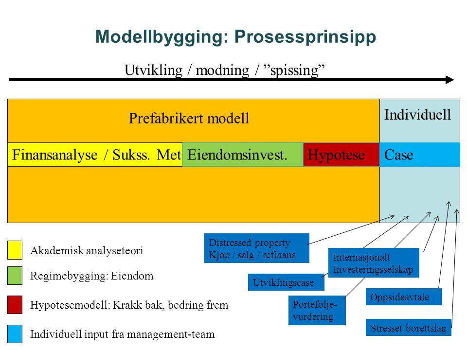 Modellbygging: Prosessprinsipp