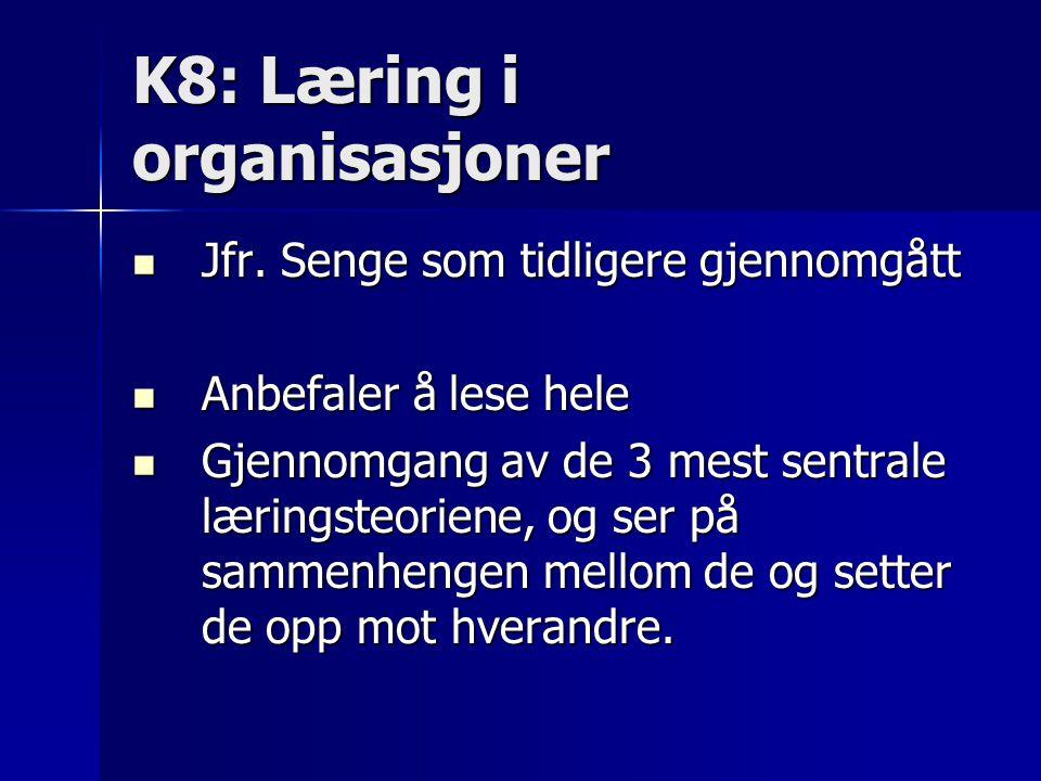K8: Læring i organisasjoner